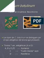 C. Botulinum Factores Virulencia