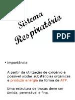 Sistema Respiratório e respiração celular