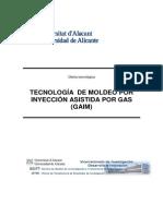 Moldeo Inyeccion Gas