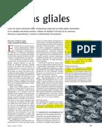 Articulo 2 Células Gliales
