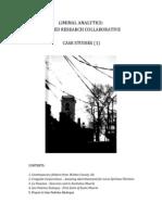 LiminalAnalytics-CaseStudiesVol.1