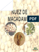 Nuez de Macadamiaok