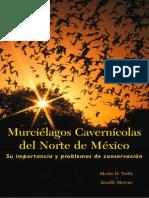 Border Bats Spanish