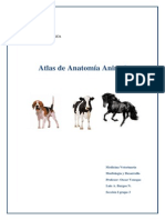 Atlas de Anatomía Animal