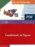 Cuaderno de Estímulos WISC III