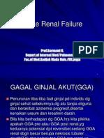 Kuliah 2 Acute Renal Failure Usage