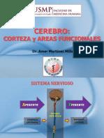 4 CEREBRO - CORTEZA Y AREAS FUNCIONALES.pdf