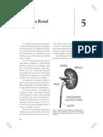 Fisiologia Renal Cap 05