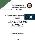 Plan de Trabajo 2014 Jefatura Sanidad
