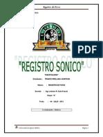 PERFIL SONICO1