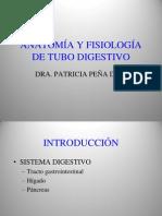 Anatomia y Fisiologia Del Tubo Digestivo (1)