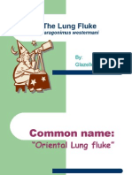 The Lung Fluke