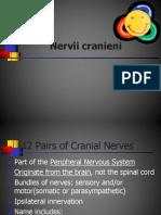 Curs 15. Nervii Cranieni
