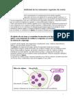 Biodegradabilidad_de_los_elementos_vegetales_de_sosten.doc
