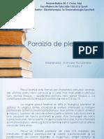 Paralizia de Plex Brahial
