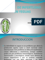 Causas de Infertlidad en Yeguas