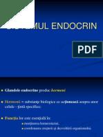 2013 Sistemul Endocrin Stud