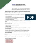 Logopedia. Patologías de La Voz