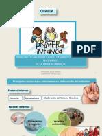 Charla-2 Parte- Desarrollo y Trastorno en La Infanticia