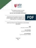 Informe Final Andres Chavez Final