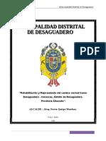 PIP Rehabilitación y Mejoramiento Del Camino Vecinal Tramo Desaguadero