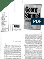 Texto 2a - SIMMEL, G O Estrangeiro
