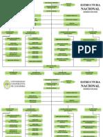 Estructura Nacional Vigente y de Sede