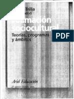 Animacion Sociocultural 1 Trilla, J.