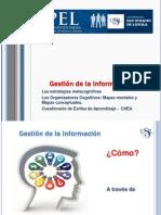 Tema 1 Gestion de La Informacion