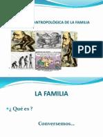 Evolucion Antropológica de La Familia