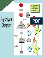 Glycolysis Diagram