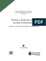 Teoria y Practica de La Accion Comunit