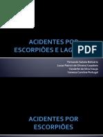 Acidentes Por Escorpiões e Lagartas (1) Epid