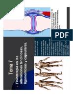 Tema 7 Fisioterapia en Las Alteraciones Tendinosas, Ligamentosas y Capsulares