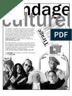 Sondage culturel