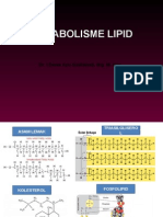 Metabolisme Lipid [Recovered]