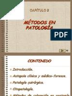 02, Metodos en Patologia