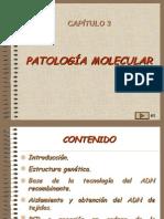 03, Patologia Molecular