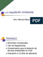 La Regulacion Ambiental