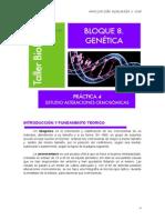 GENETICA 4-Cariotipo, Idiograma, Amniocentesis