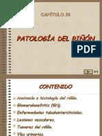 26,Patologia Renal