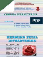 cirugia intrauterina