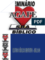 Estudo Bíblico Indutivo - Aula 04