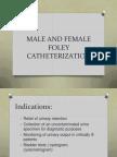 Male and Female Bladder Catheterization