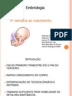 Trabalho de Embriologia 9 Semana Ao Nascimento