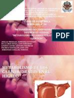METABOLISMO DE CARBOHIDRATOS EN DIFERENTES TEJIDOS