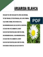 margarida blanca.pdf