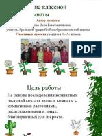 презентация проекта озеленения класса