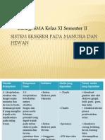 Sistem Ekskresi Pada Manusia dan Hewan.pptx