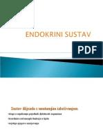 Endokrini-sustav